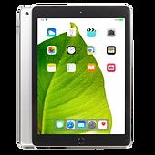 iPad Leaf.png