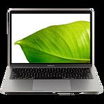 Macbook AIR Leaf.png