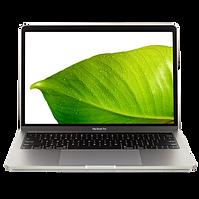 Macbook PRO Leaf.png