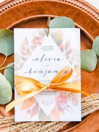 Vellum Invitation + Ribbon Wrap - Tasha Barbour Photography