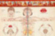 channels-in-Tibetan-medicine.jpg
