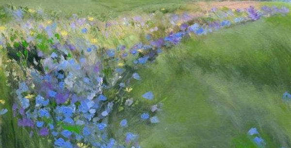 Cornflowers Signed Open Print by Sue Fenlon