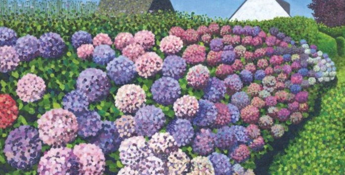 Hydrangeas in Vannes Signed Edition Print by Susan Entwistle