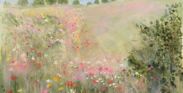 Poppies in a Summer Meadow Signed Open Print by Sue Fenlon