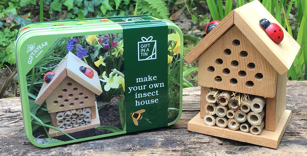 Make you own Insect House