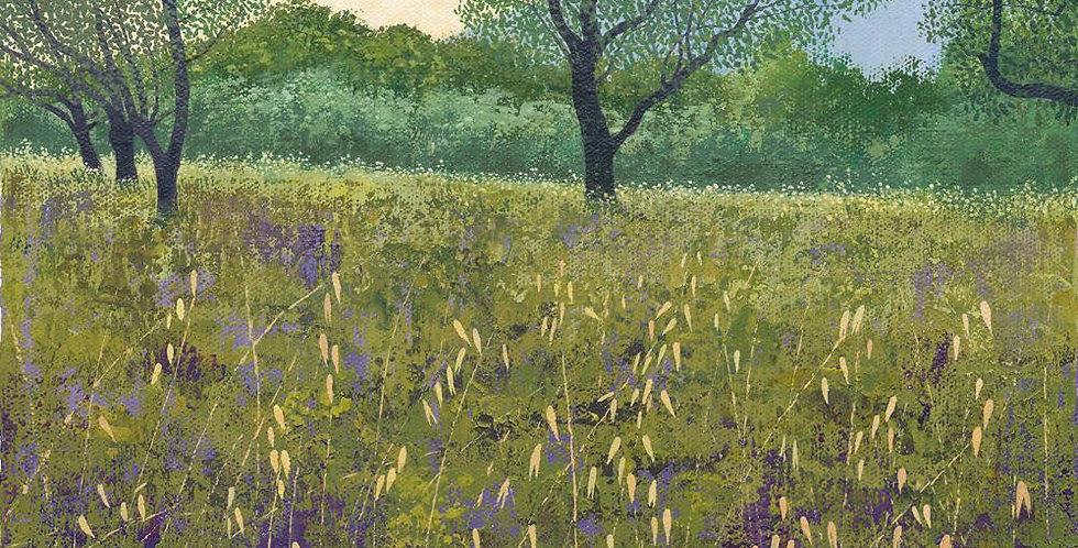 Olive Tree Signed Edition Print by Susan Entwistle
