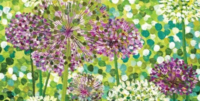 Allium Flowers Signed Edition Print by Susan Entwistle