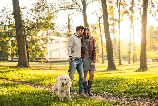 couple-walking-dog-park.jpg
