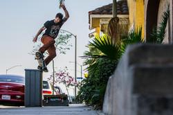 Professional Skateboarder Chris Cole