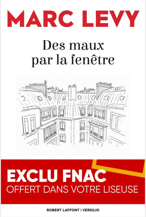 """Cover for """"Des Maux par la fenêtre"""" by Marc Levy"""