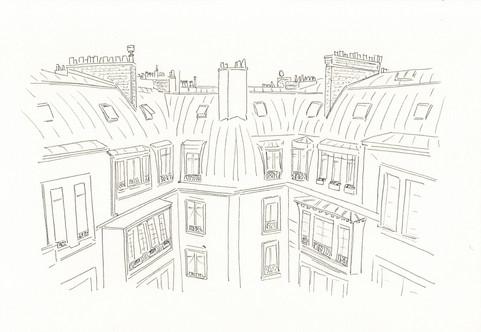 Les toits de Paris - Paris roofs