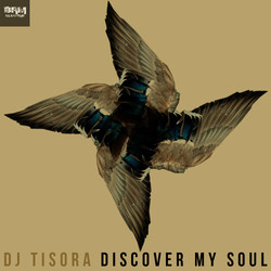 Discover My Soul - Album Cover
