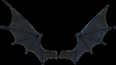 demon-wings-png-2.png