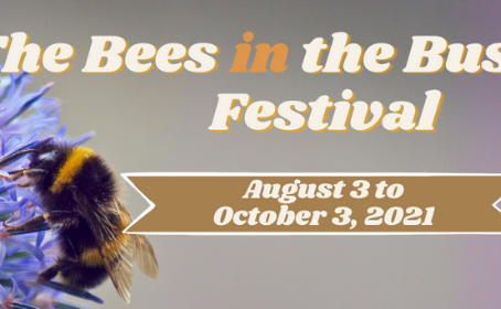 Talk Is Free Theatre Announces The Bees in the Bush Festival