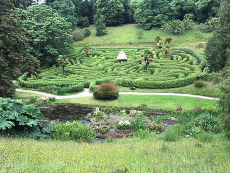 The Maze/ Le Labyrinthe