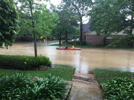 The Flood/L'Inondation