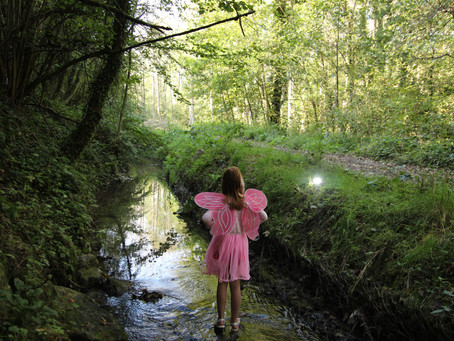 A Fairy in the Forest / Une fée dans la forêt