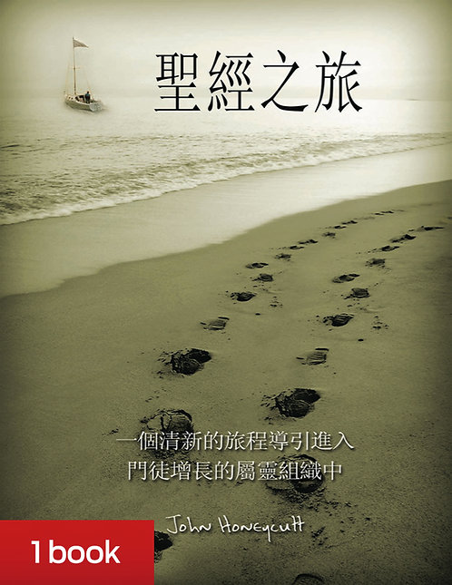 Journey Traditional Chinese - includes shipping
