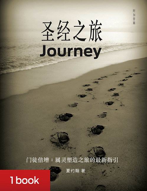 Journey Simplified Chinese - includes shipping