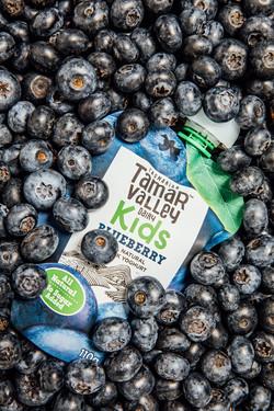 Blueberry-Cover-Yogurt