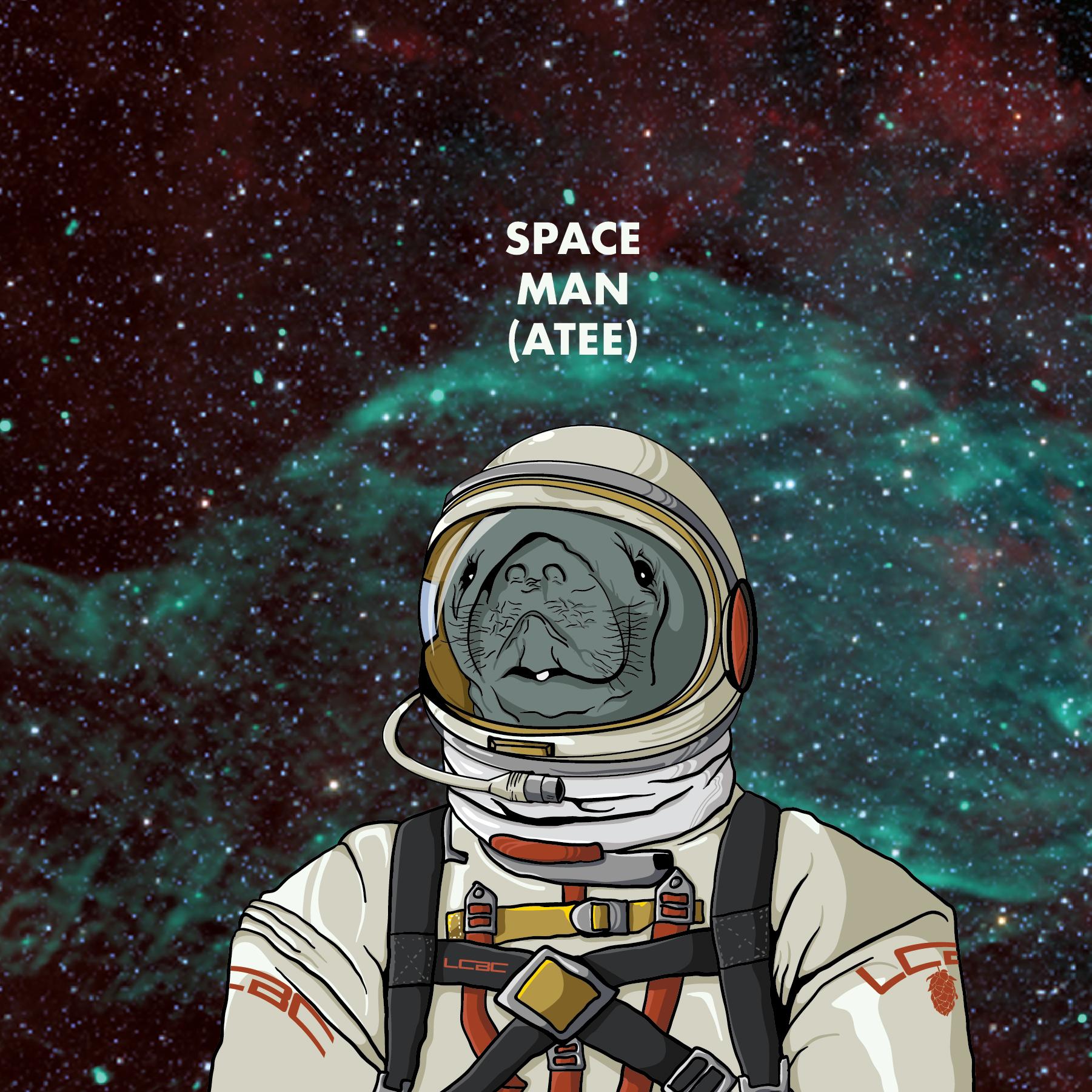 Space Manatee