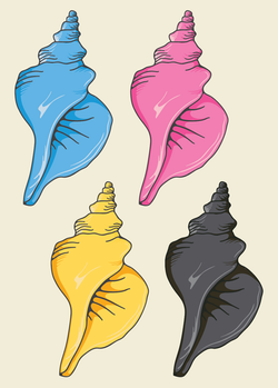 CMYK Shells