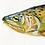 Thumbnail: Apache Trout Original Gouache