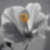 Screen Shot 2020-01-02 at 10.20.40 AM.pn
