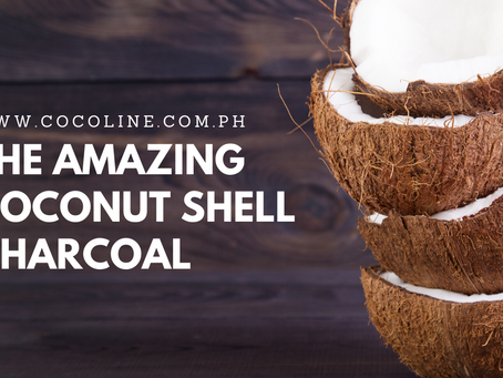 THE AMAZING COCONUT SHELL CHARCOAL