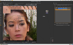 Tracking face