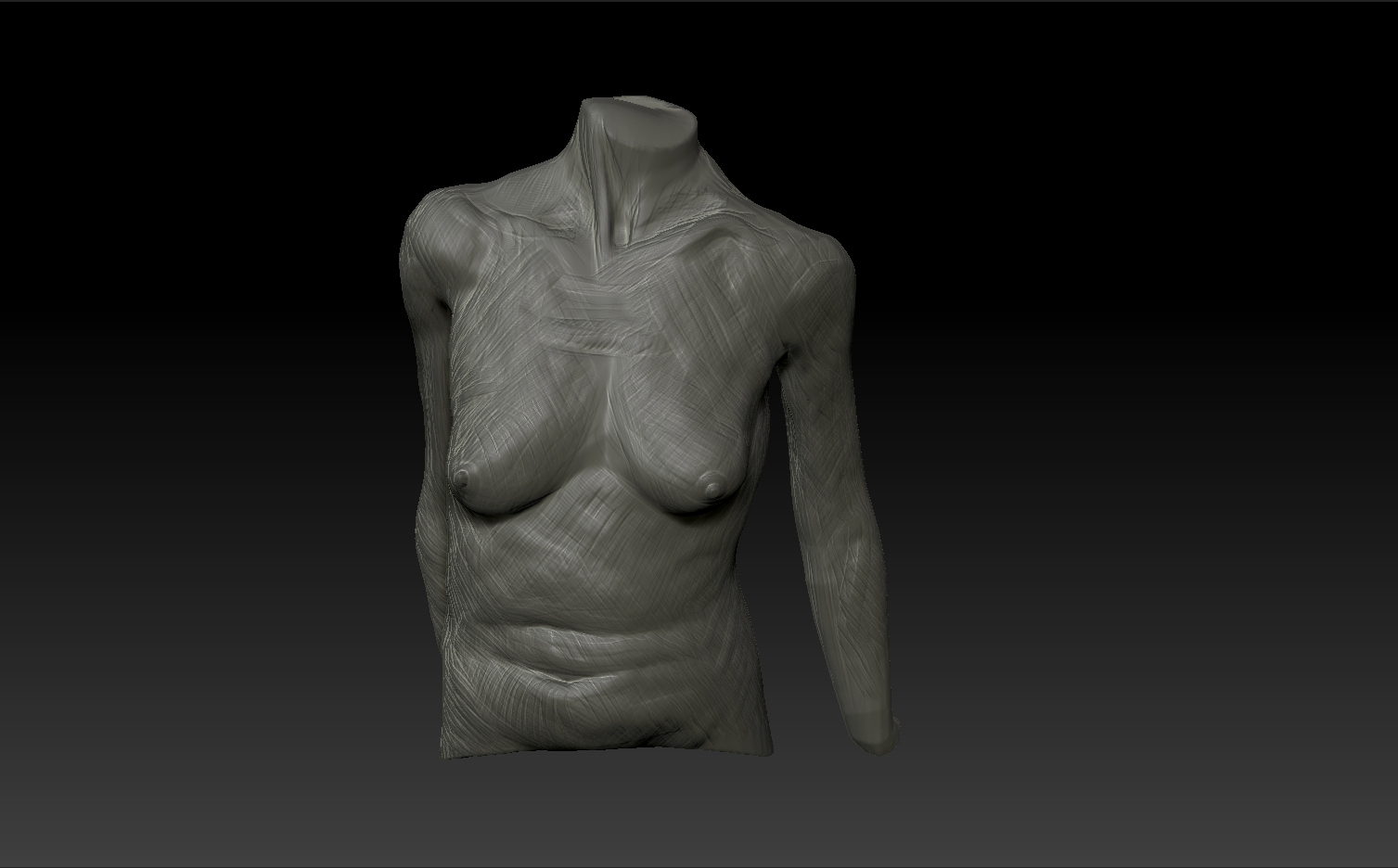 life sculpting