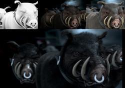 Compo pig