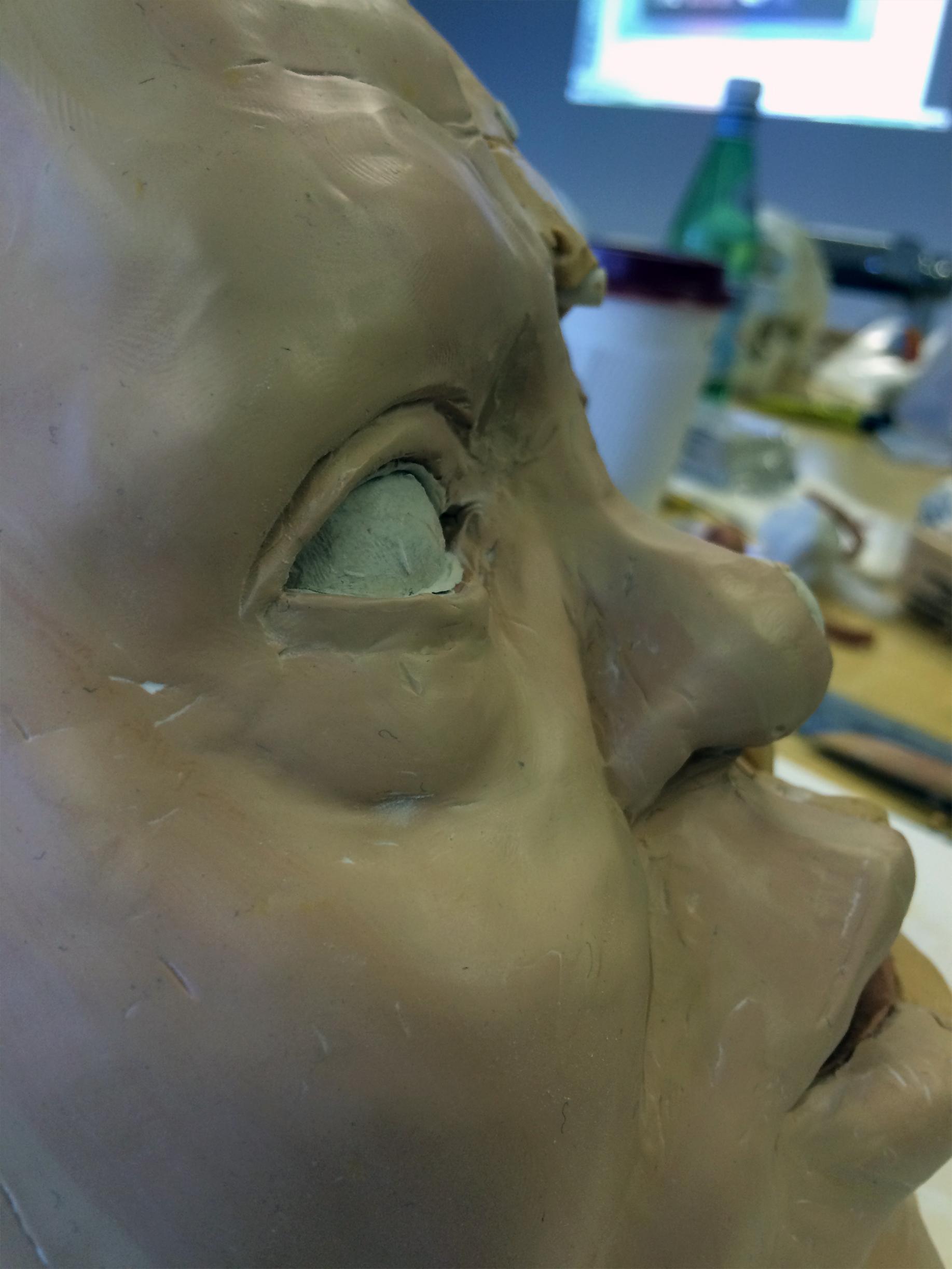 anatomy05.jpg
