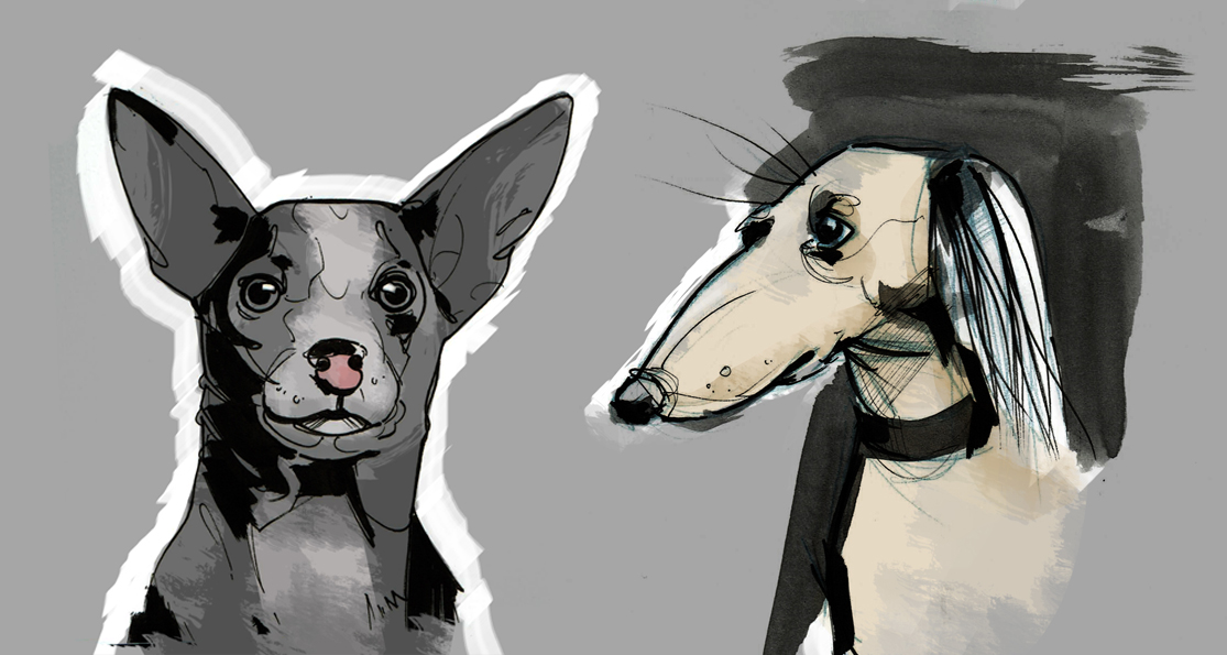 02 dog_ sketches