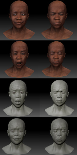 expressions anatomy