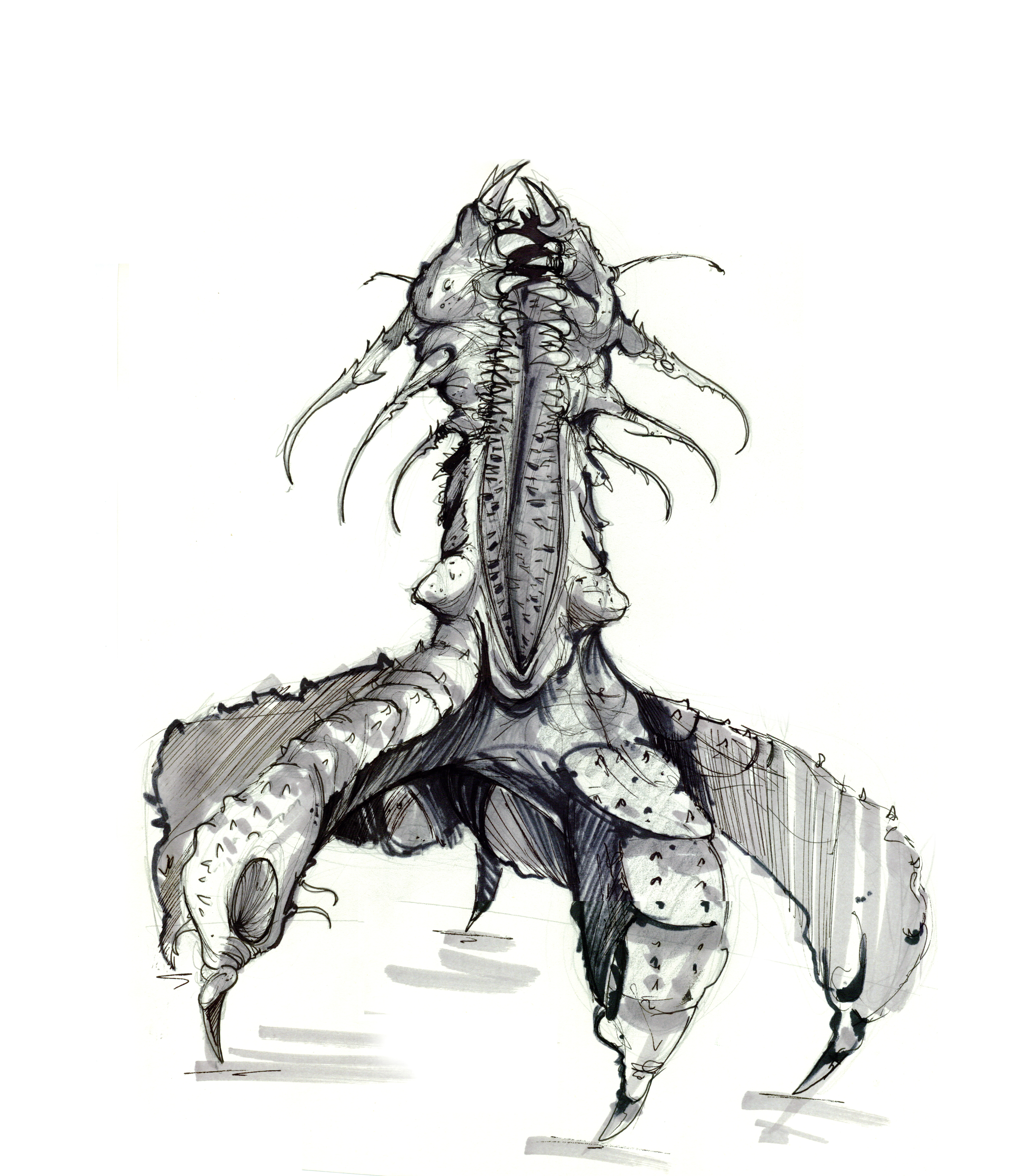 monstruo02