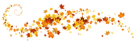 fall-png-16.png