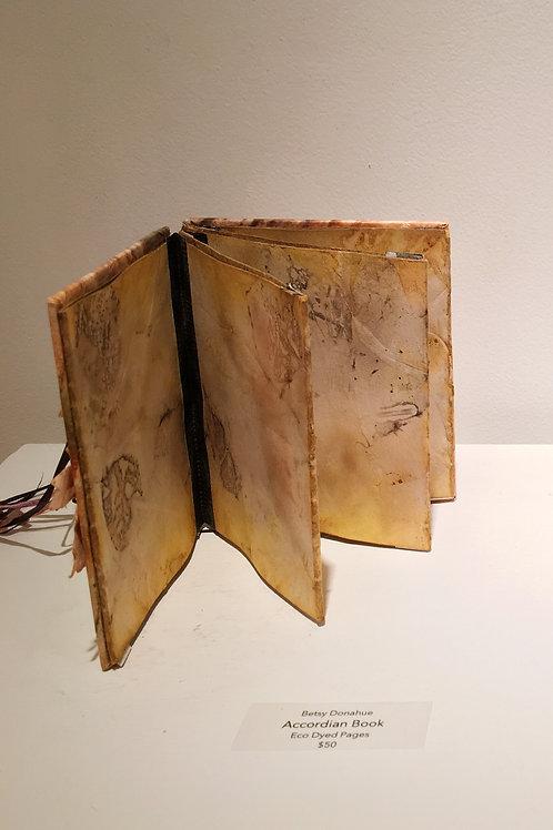 """Accordian Book"""