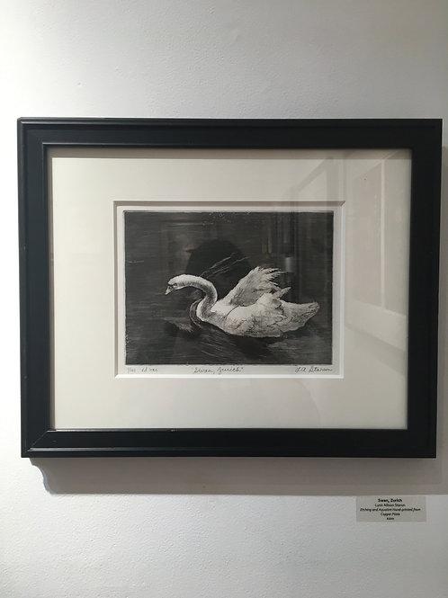 """""""Swan, Zurich"""""""