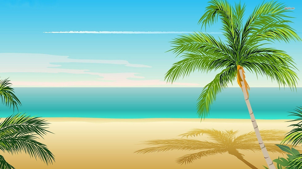 palm_tree_backgrounds_001.jpg