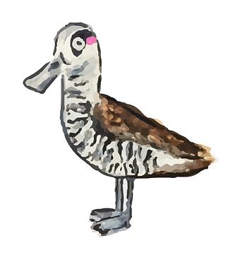Wymbin Duck.PNG