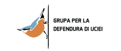 logo-kleiber