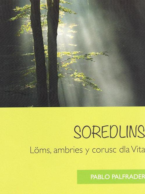 Soredlins. Löms, ambries y corusc dla Vita (Pablo Palfrader)
