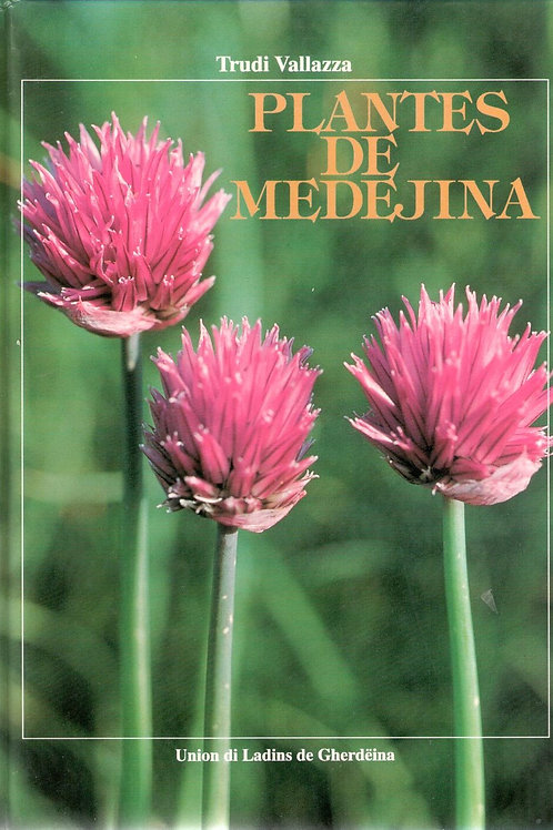 Plantes de medejina (Trudi Vallazza)