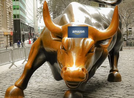 IS IT RISKY THAT AMZN IS THE SAFE HAVEN FOR INVESTORS?
