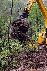 Tree Removal, Stumps, Large Trees, Small Trees, Excavator, Warrnambool