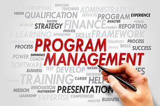 High quality Program Management services