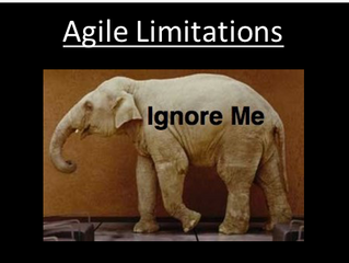 The Elephants in the Agile Room