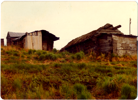 Houses in Ruby, Alaska 1975 lr.png