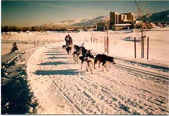 Iditarod Musher 1996 lr.png